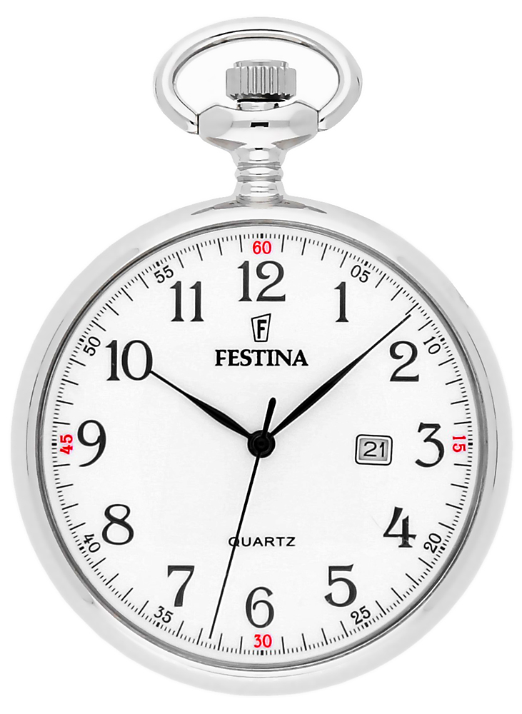 Festina F2019-1 - zegarek męski