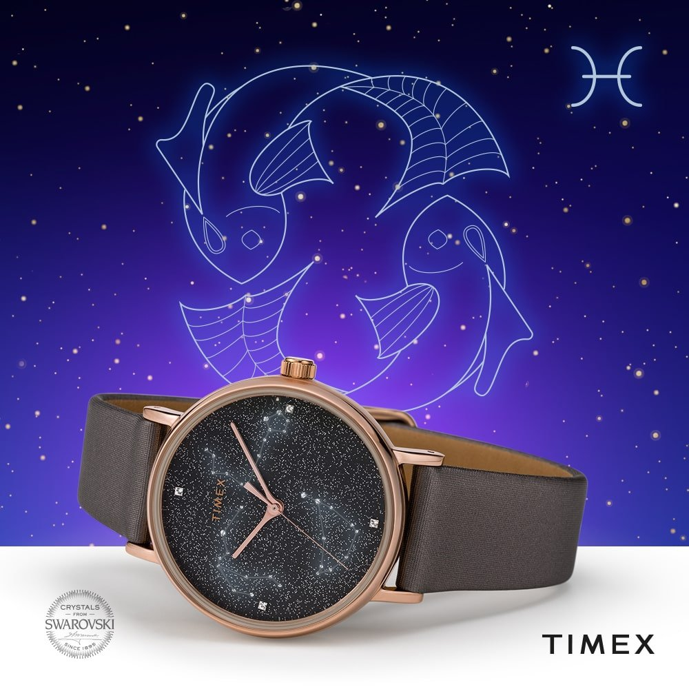 Timex-ryby