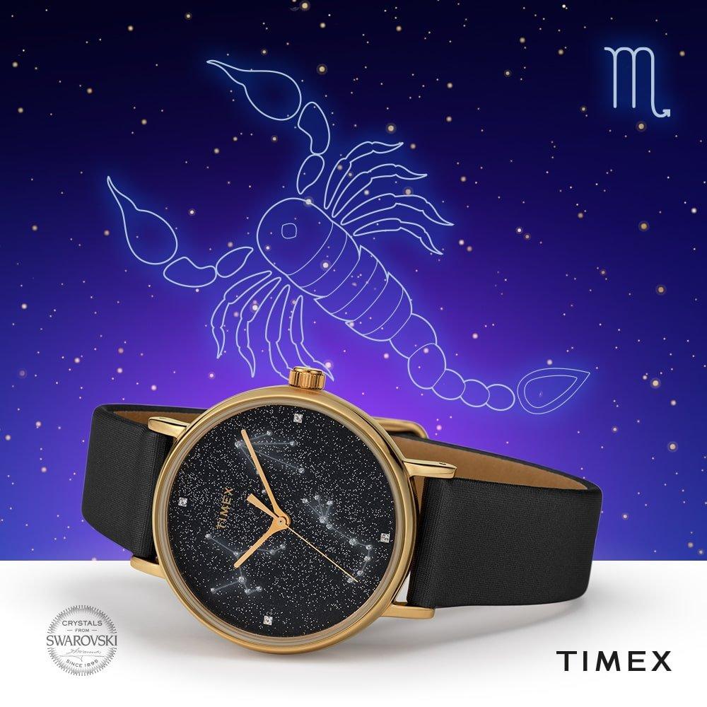 Timex-skorpion