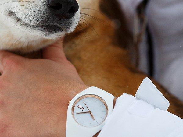 1. Zegarki damskie ICE-Watch
