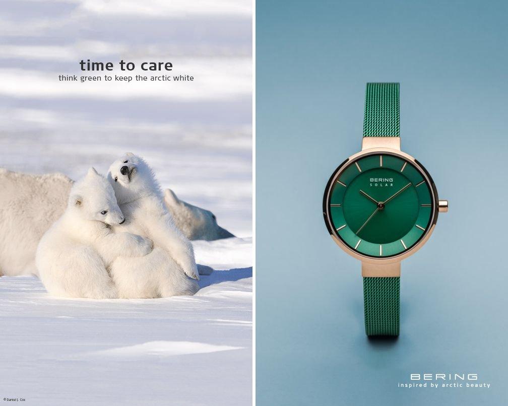 Marka Bering ratuje niedźwiedzie polarne