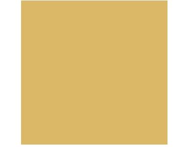 1 miejsce w Rankingu Sklepów Internetowych OPINEO 2020!