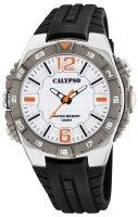 K5778-1 Calypso - duże 1