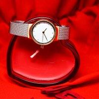 Zegarek damski Skagen freja SKW2716 - duże 3